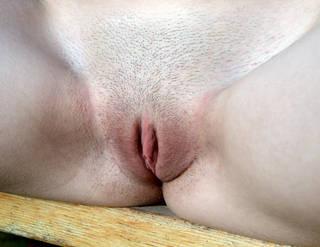 rasato